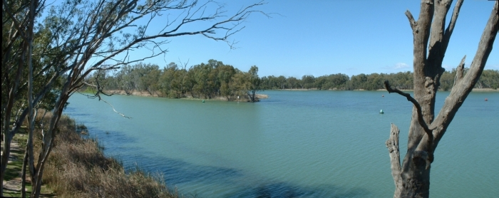 A panorama of the junction of the Murray and Darling Rivers at Wentworth, New South Wales. The Darling River is on the left of the photo.