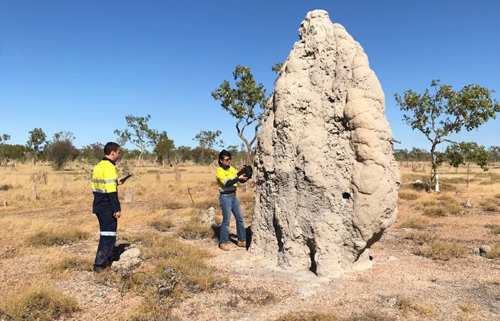 CSIRO researchers measuring methane fluxes from a termite mound