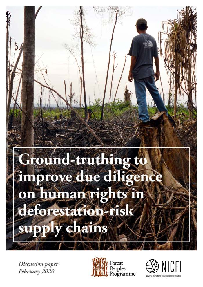 Ground-truthing to improve due diligence on human rights in deforestation-risk supply chains